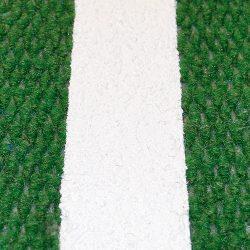 carpet-grass-01