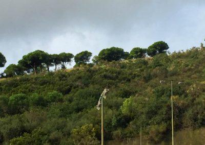 maxpeed-renovacion-iluminacion-4-pistas-tenis-vall-parc-002